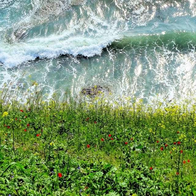 Анапа побережье, чёрное море