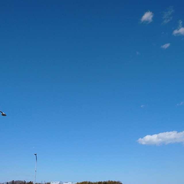 横浜の晴天