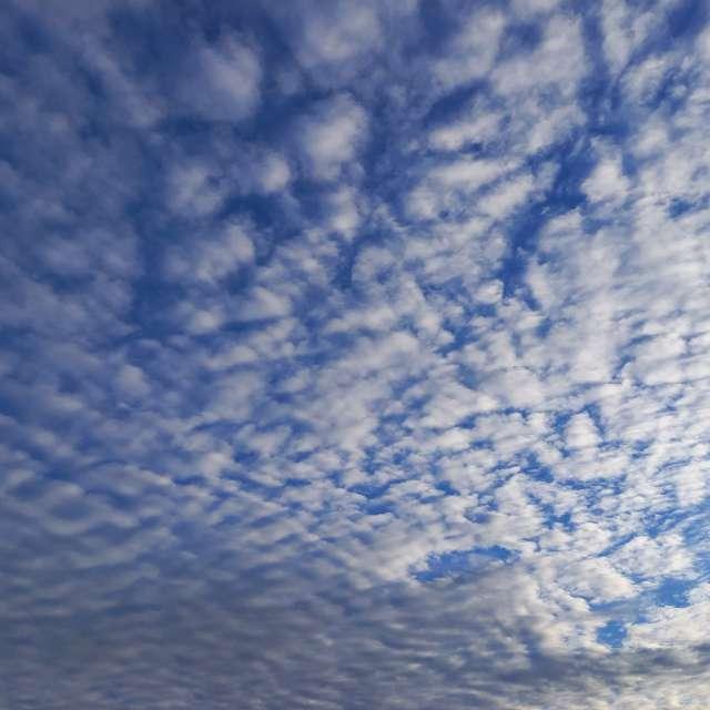 うろこ雲?