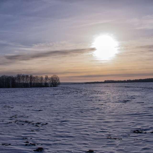 Поле. Зима. Солнце