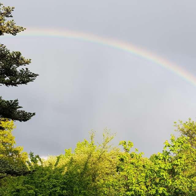 Regenbogen Dattenfeld