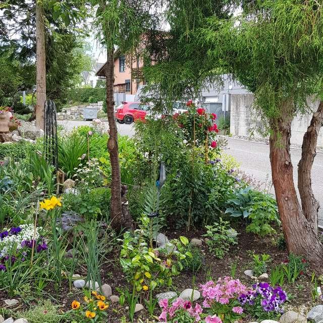 Haus Garten am Strasserand