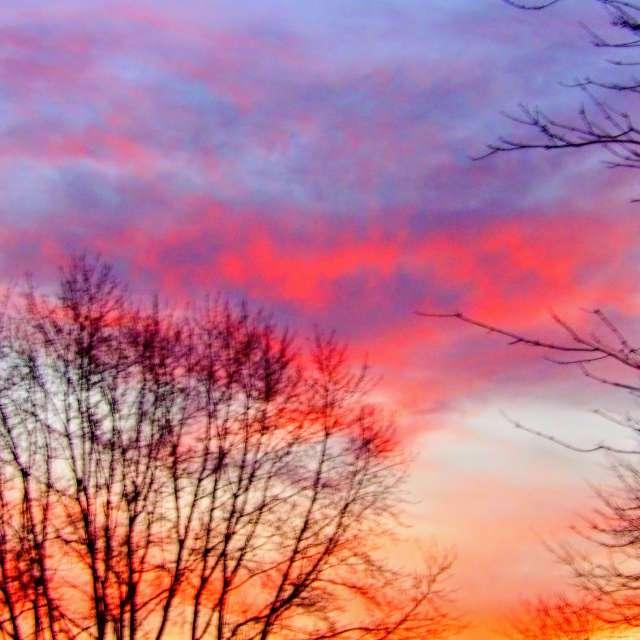 Heart Cloud in Morning Sky