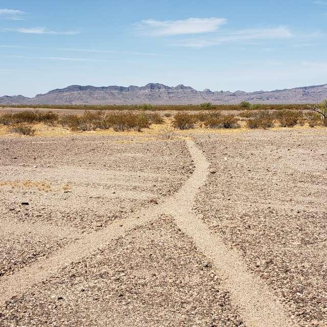 Prehistoric trail
