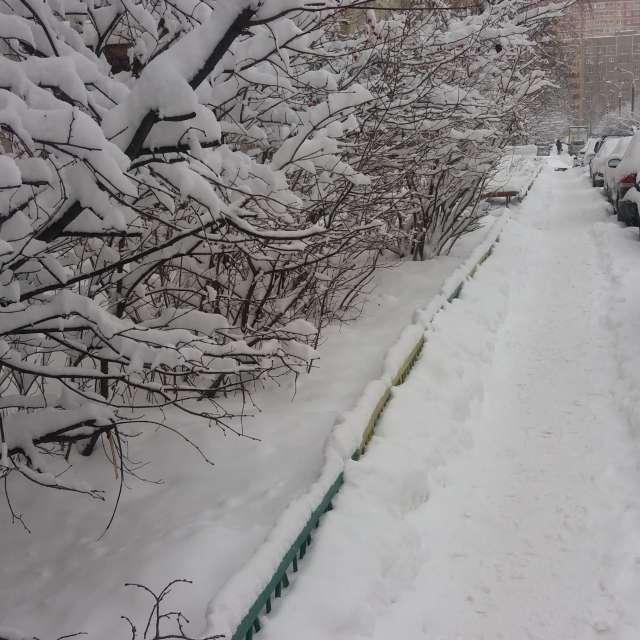 Зима во дворе