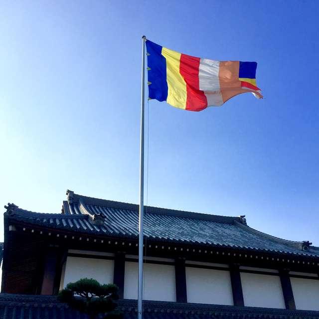 風になびく六色仏旗