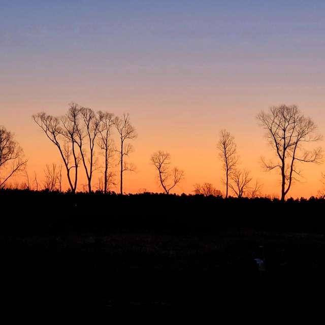 Michigan sunrise