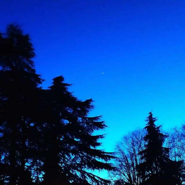 Le notti stellate
