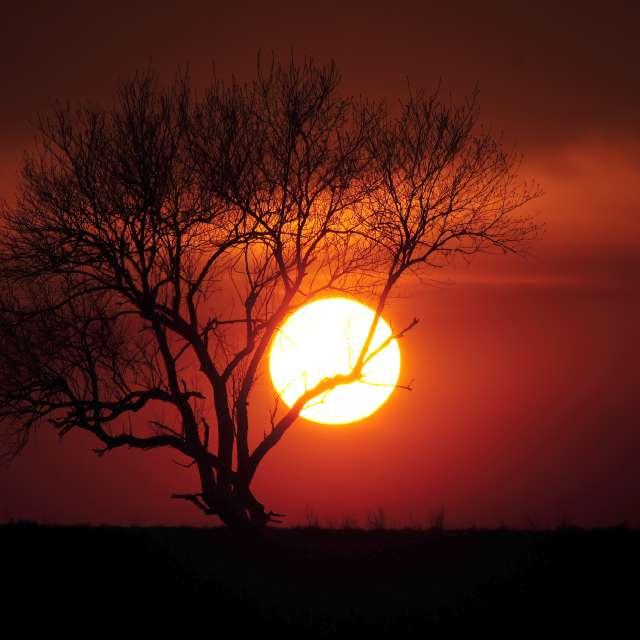 Stephens Sunset 3