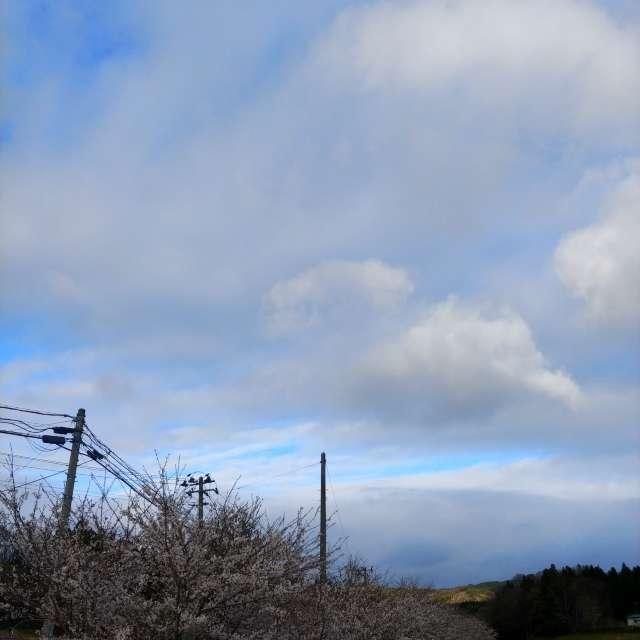 サクラ🌸川、山、雲、青空、てんこ盛り😉