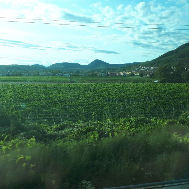 By Train, the Euganean Hills