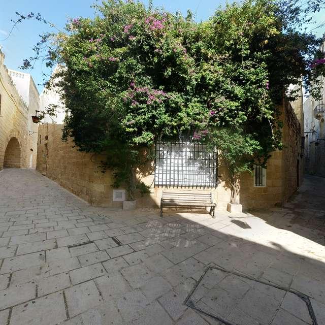 Malta, Medina