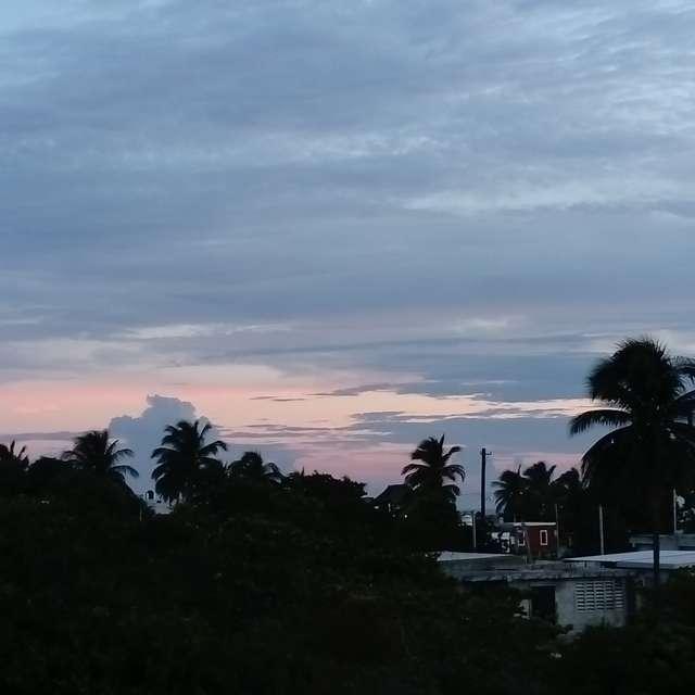 Una mañana tranquila