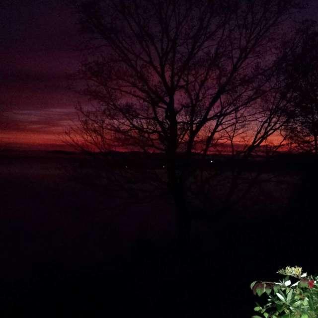 Early mornings Glory