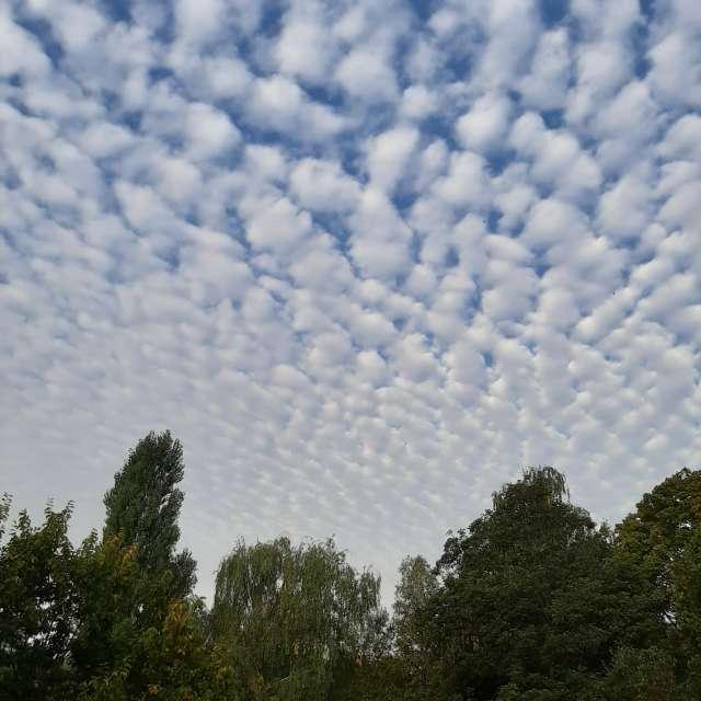 Altocumulus cloud