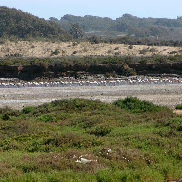 National Park near Agadir