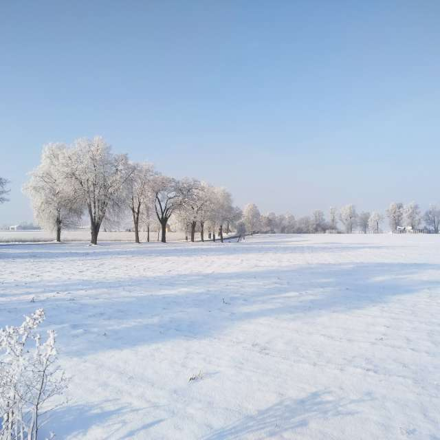 Winter on Poland