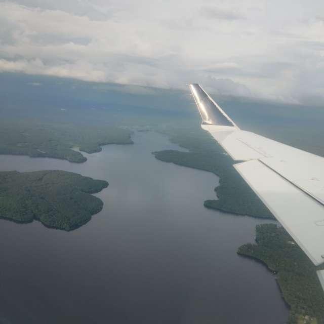 Tallahassee Florida Swamps