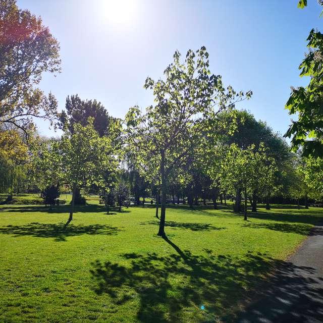 Griffith Park, Dublin