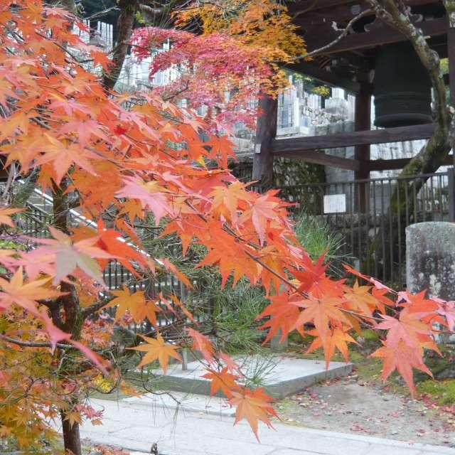 永観堂(eikando)