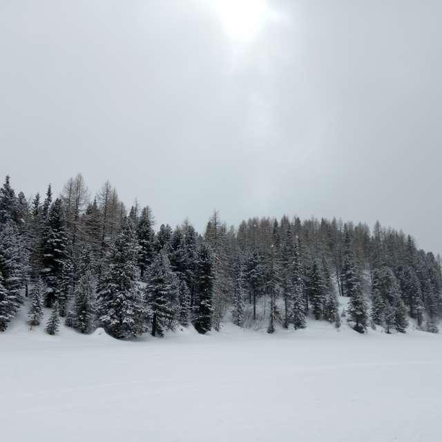 Sunshine after snowfall