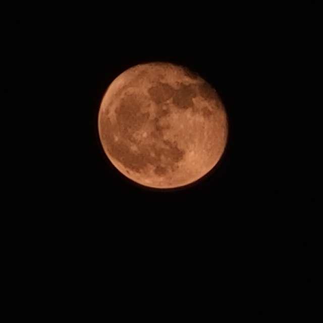Waning Harvest Moon
