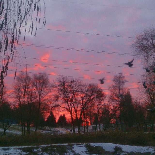 Раннее утро, мороз -10*С