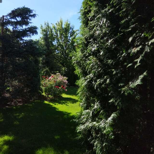 Spring May garden