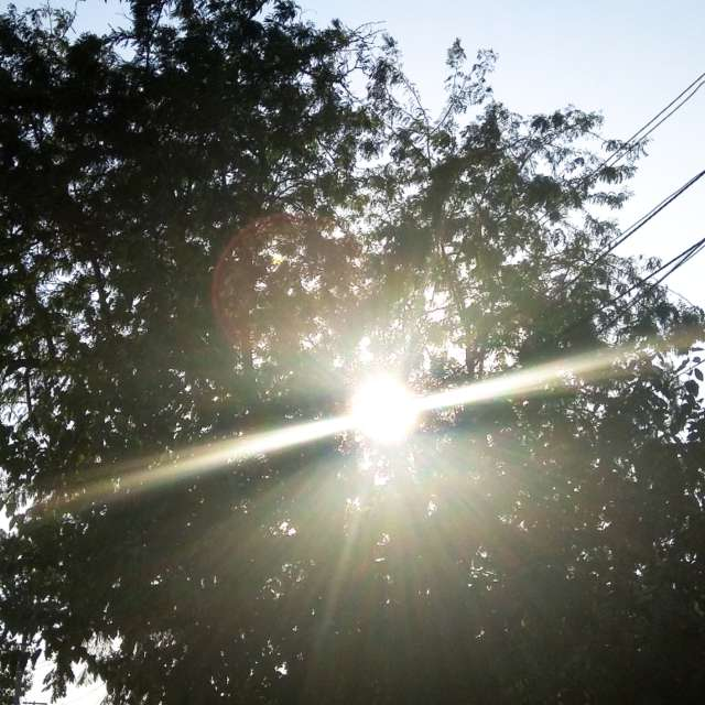 Солнце греет