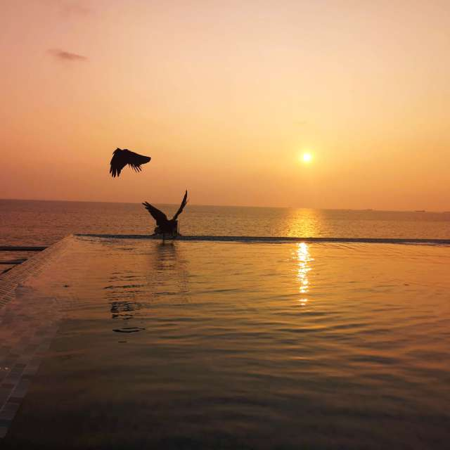 Sunset on the rooftop pool