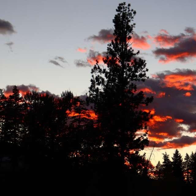 Evening  69°F slightly cloudy