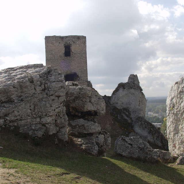 Royal castle in Olsztyn