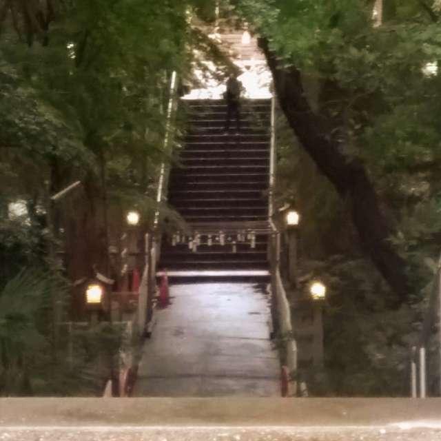 二宮神社鳥居から Ninomiya Shrine