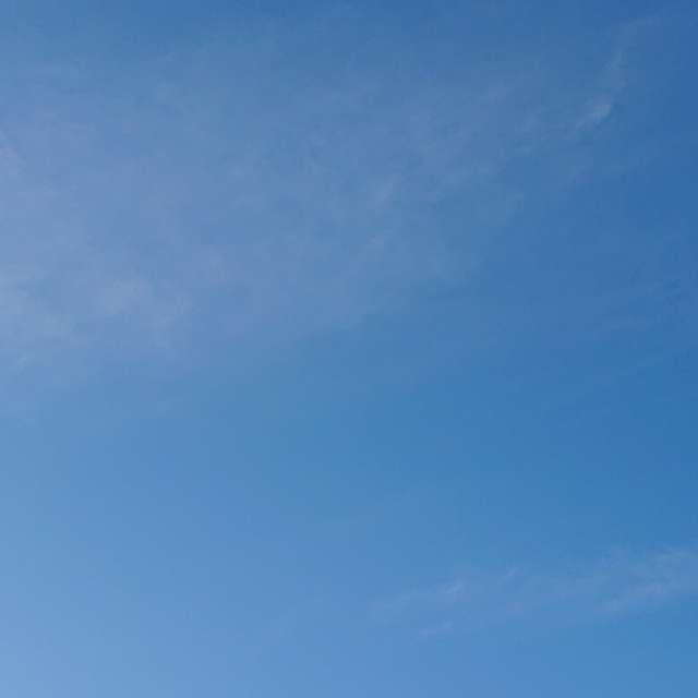 久しぶりの青い空 気持ちいいねー