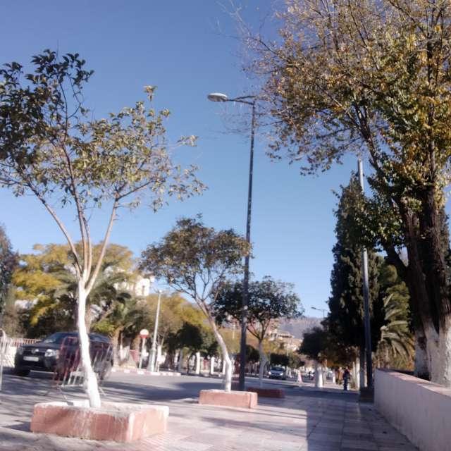 sunny day in batna city