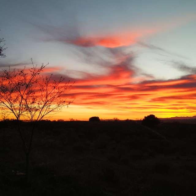 Puesta de sol en Arroyomolinos