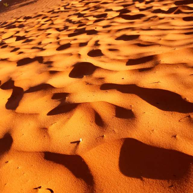 Pink Corral Sand Dunes