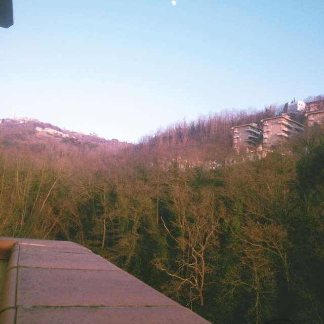 Triest - sunny winter