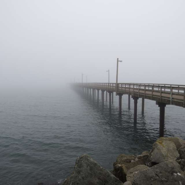Long Pier In Fog