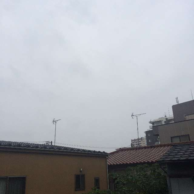 とても涼しい雨