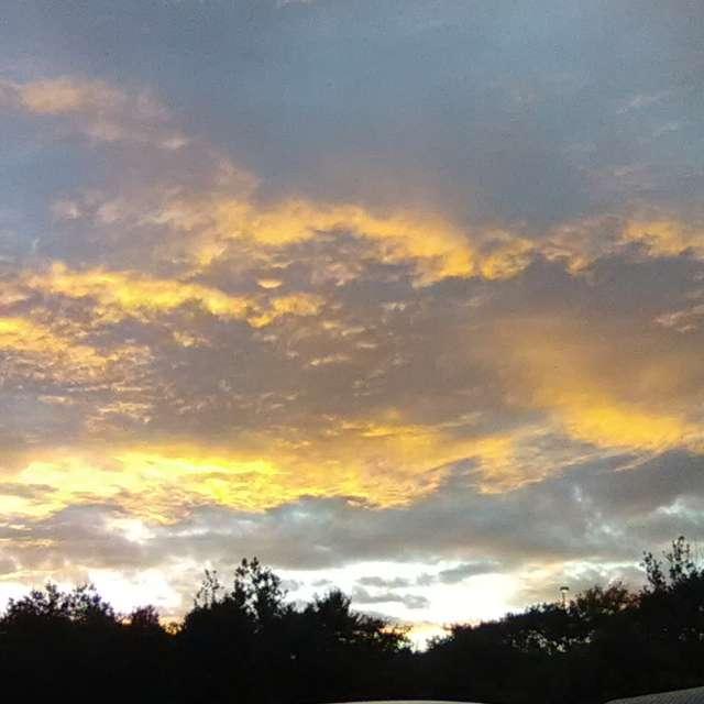 A Golden Sunset