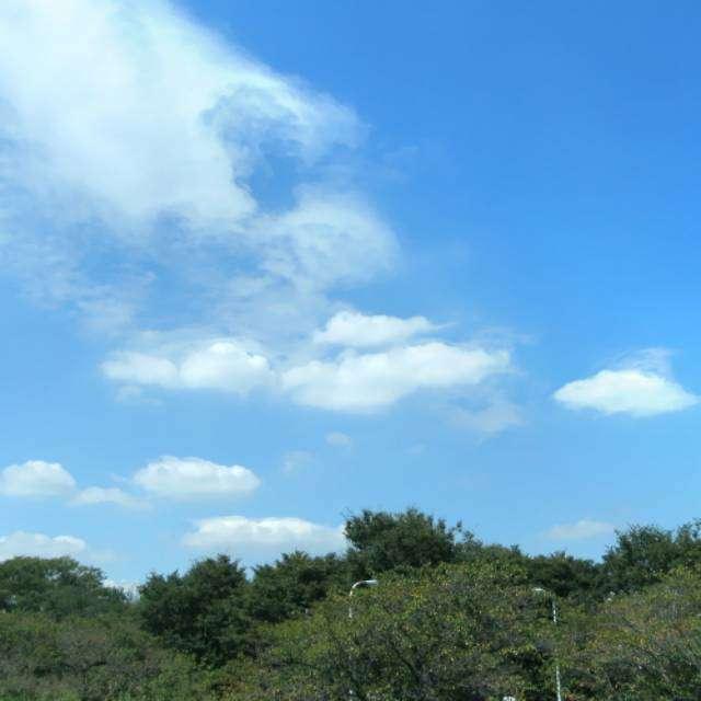 西河原公園上空(東京都狛江市)