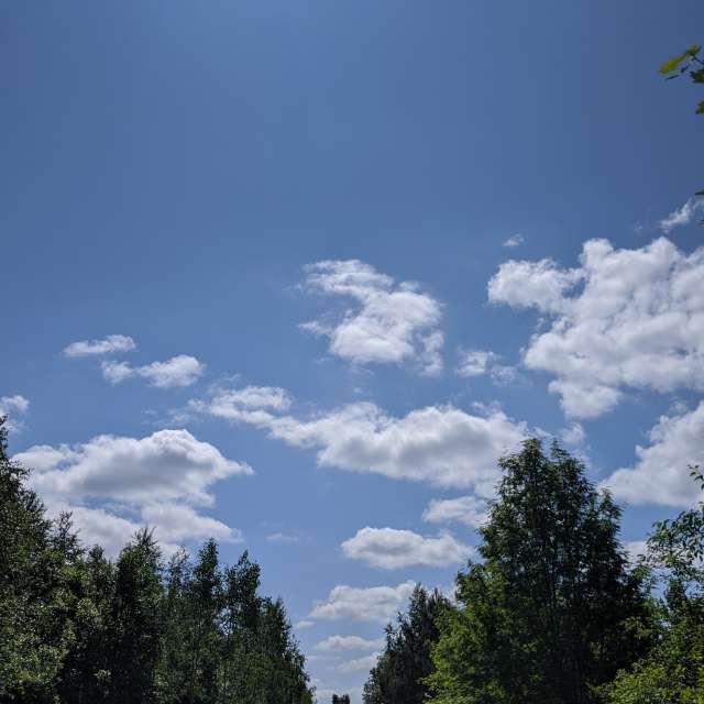 По дороге с облаками...