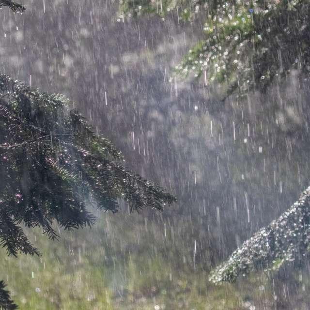 Rainy day in Idaho
