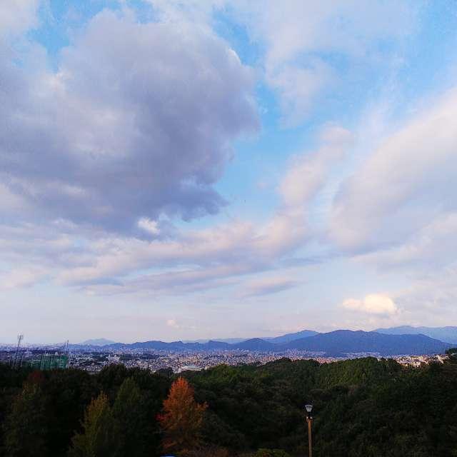 筑紫野 市 天気