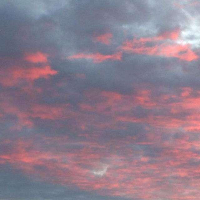 とてもきれいな夕日