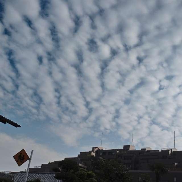 港区のうろこ雲