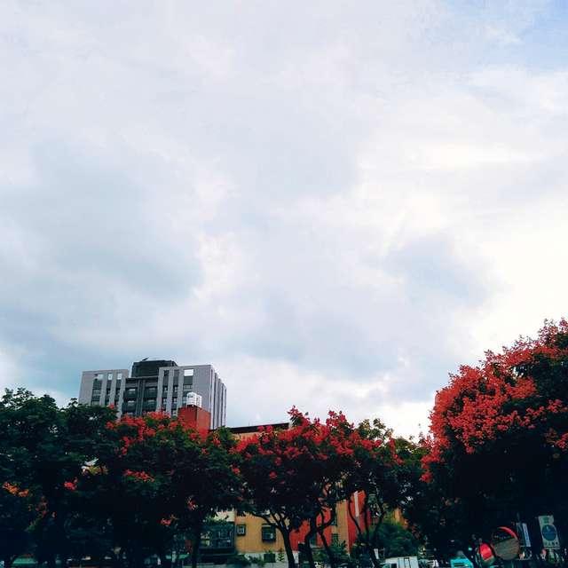 Cloudy winter