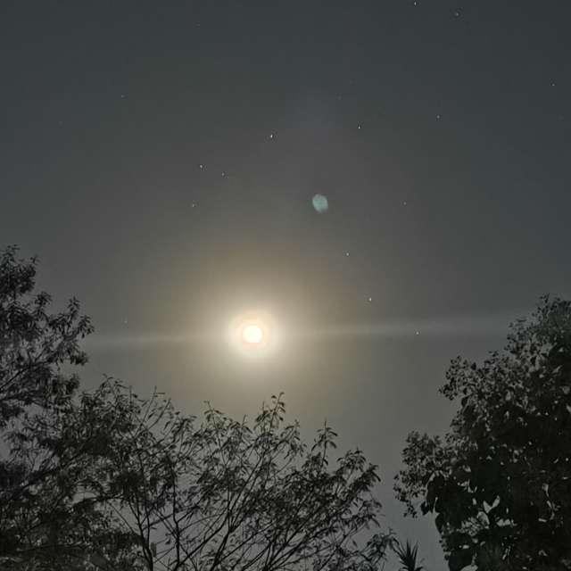 Moonlight 5-26-21