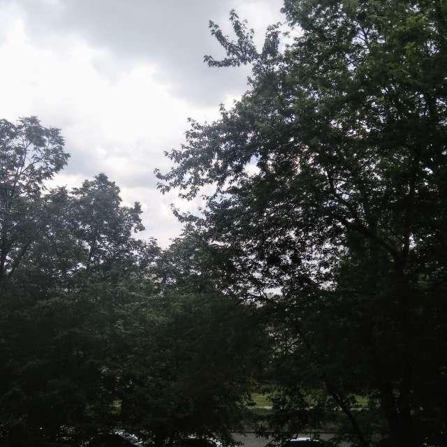 Pogoda pochmurna